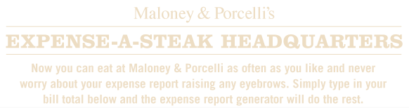 maloney porcelli expense report generator
